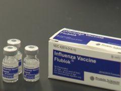 Flublok Flu Shot