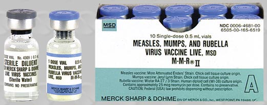Mmr Vaccine National Vaccine Support Group