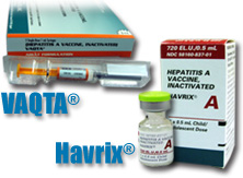 Hepatitis A Vaccines